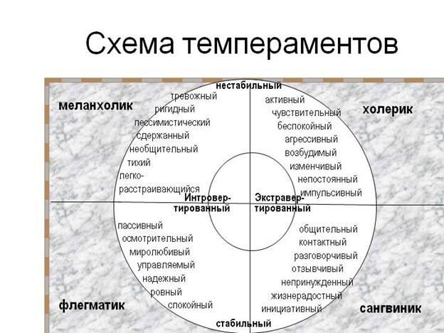 схема темпераментов